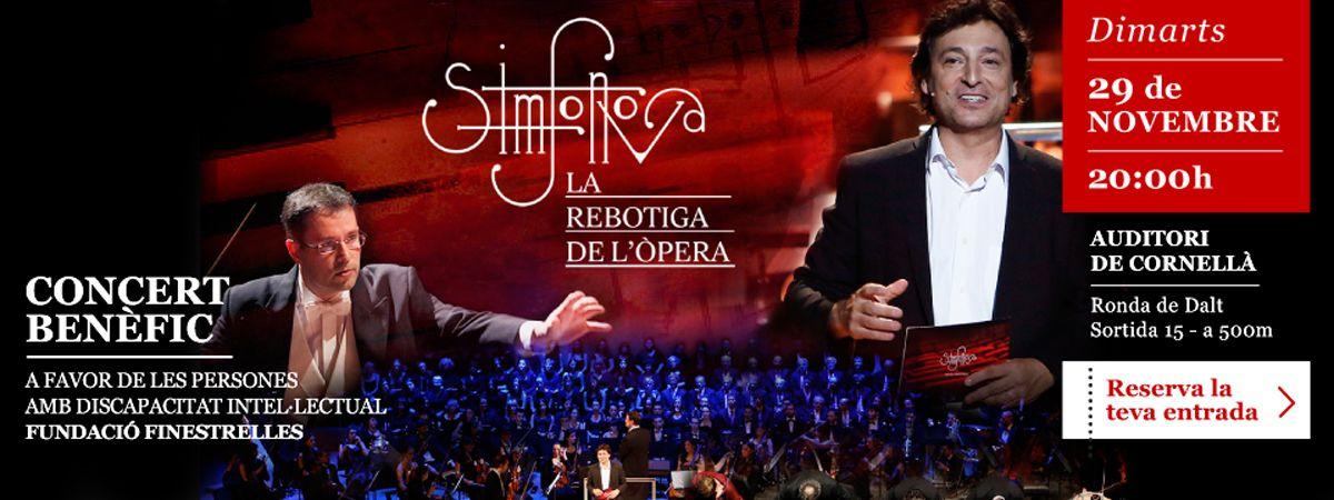 Concert Benèfic 29 de Novembre